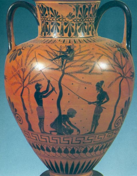 vaso greco olivo